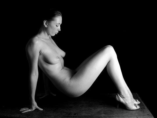 Foto de abedul desnudo